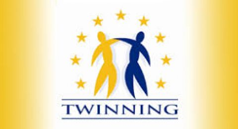 "Bando comunitario:""Invito a presentare proposte per lo 'Sviluppo e il consolidamento della Commissionership for Children and Youth out of Home complaints' - ENI Twinning Light Israele""."