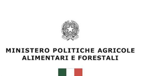 """Bando nazionale:""""MIPAAF/OCM Vino - Promozione sui mercati dei Paesi terzi""""."""