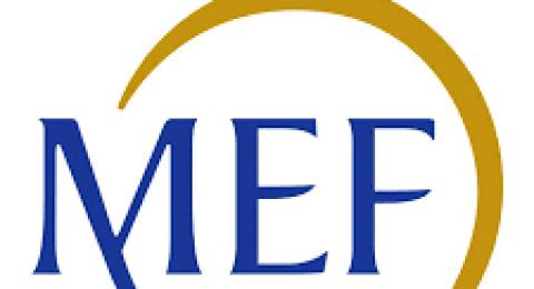 """Bando nazionale:""""MEF – Decreto 10 Agosto 2020 'Fondo Patrimonio PMI'""""."""