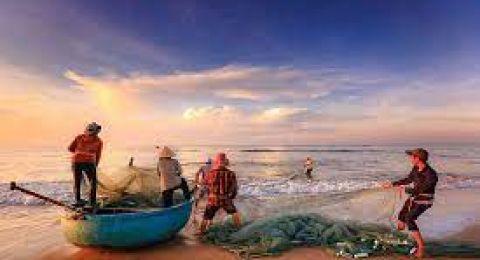 L'Esecutivo comunitario lancia la Consultazione pubblica 'Verso una pesca europea più sostenibile'.